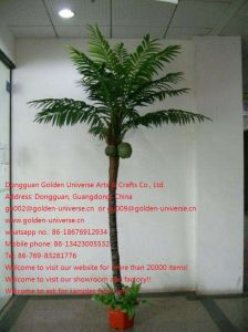 Artificial Plants and Flowers of Coco Palm Gu543500336236134470023jk0 pictures & photos