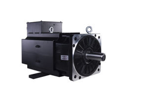 34kw Motor Used in Injection Molding Machine pictures & photos
