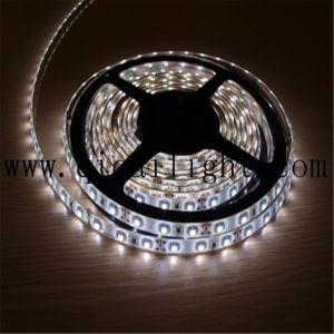 China Supplier LED Christmas Strip Lights 2835 SMD Flexible LED Strip pictures & photos