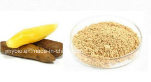 Whitening Cream Health Food 10: 1; 20: 1 Yacon Fruit Extract pictures & photos