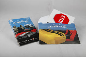 Cardboard Printing Full Colour Paper Company Brochure Quote pictures & photos
