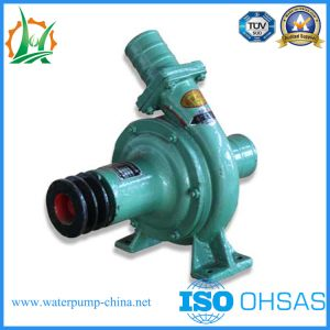 CB80-31 Inclined Type Centrifugal Diesel Water Pump pictures & photos