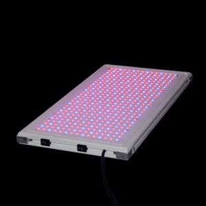 50W SMD2835 LED Grow Light for Plant pictures & photos