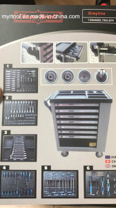 249PCS Trolley Tool Set in Foam Packing (FY249A2) pictures & photos