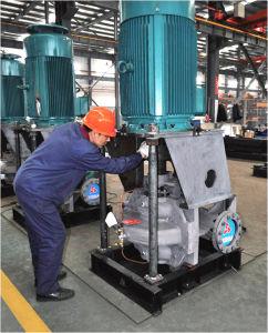 Hsv Series Ce Approved Vertical Double Suction Split Case Pump (HSV125-80-300A) pictures & photos