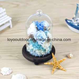 DIY Preserved 100% Natural Real Fresh Rose Flower Glass Cover Eternal Love pictures & photos