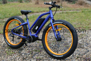 Middle Motor Fat Tire Ebike pictures & photos