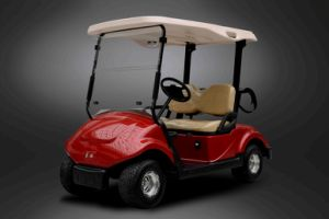 Dongfeng Club Car Golf Cart pictures & photos