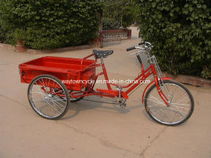 Cargo Bike (YL/24-624) pictures & photos
