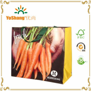 Free Sample Laminated PP Woven Cheap Promotion Shopping Bag pictures & photos