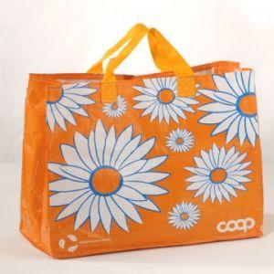 Non Woven Bag (CXNWB-015)
