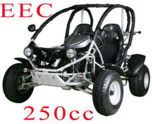 EEC 250CC Renli Go Cart (RLG2-250DZ)