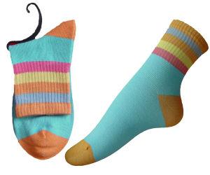 Women′s Sock (SM-121)