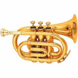 Wind Instruments (6500L)