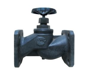 Russia Globe Valve J41W-16 pictures & photos