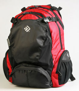 Day Hiking Sport School Travel Backpack Bag (MS1084) pictures & photos