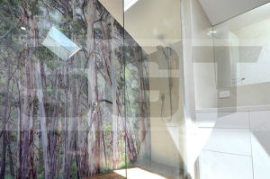Low Iron Toughened Glass for Bathroom Wall Panels pictures & photos
