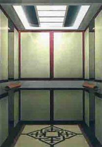 Villa Lift (TZJ-450-JXW)