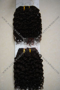 100% Human Hair Unprocessed Jerry Curl for Afro (AV-S018) pictures & photos