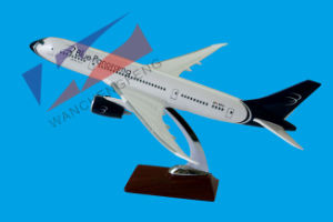 Plane Model (IB787dreamliner) pictures & photos
