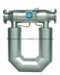 Dn100 Mass Flow Meter for Measuring Liquids (Water, Fuel, Rude Oil, Gasoline, Diesel, Solvent, Slurry)