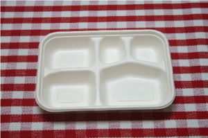 Disposable Biodegradable Paper Tray (T009)