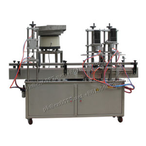 Gt6t-6g Automatic 6 Heads Piston Paste and Liquid Filling Machine pictures & photos