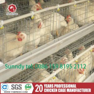 Wire Mesh Battery Chicken Cage Poultry Farm Machinery Farms Cage pictures & photos