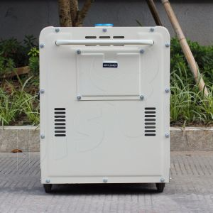 Bison (China) BS7500dse Single Phase Professional Diesel Engine Generator 6.0kw pictures & photos