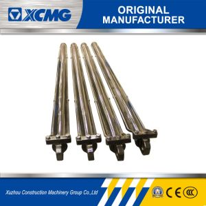 XCMG Official Original Manufacturer Crawler Crane Cylinder pictures & photos