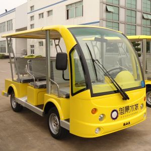 8 Seats Electric Tourist Bus with 48 Volt Battery (DN-8F) pictures & photos