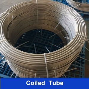 A269 316L Stainless Steel Welded Coiled Tube