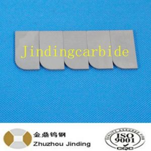 Tungsten Carbide Wear Part for Tampers pictures & photos