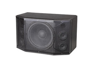 Beautiful Sound for 12 Inch Loudspeaker K112 pictures & photos