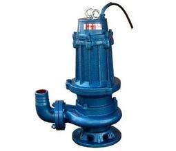 Submerge Dirt Drain Water Pump Qw pictures & photos