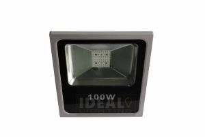 Ultra Bright Outdoor 10-100W LED Floodlight with Ce&RoHS pictures & photos