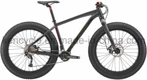 Fat Bike pictures & photos