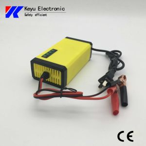 Intelligent Charger (Lead Acid battery) pictures & photos