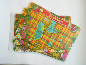 Map Printing Cheap PP Plastic Table Mat pictures & photos