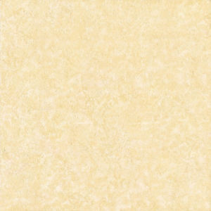 Buiding Ceramic Matt Rustic Tile for Floor 600X600 (RLJ6018)