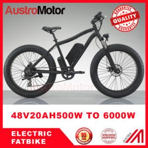 Electric Fat Bike 3000W Electric Fat Bike 500W