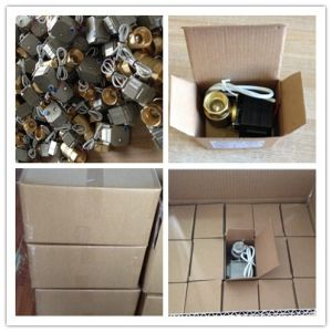Dn20 230V Brass Nickel Plated Electric Water Shut off Valve pictures & photos