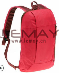 Promotion Bag 10L Backpack Trend pictures & photos