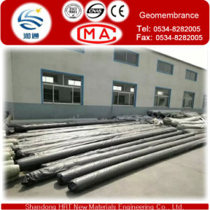 Cheapest 100% Recycle Waterproofing HDPE Geomembrane for Irrigation