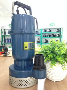 Qdx Series Clean Water Submersible Water Pump for Farm Irrigation pictures & photos