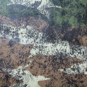 4 Color Camouflage Design for Upholstery Leather (QDL-53225) pictures & photos