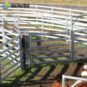 Galvanized Livestock Metal Cattle Fence Panels pictures & photos