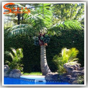 Garden Decoration Evergreen Plastic Artificial Coconut Tree pictures & photos