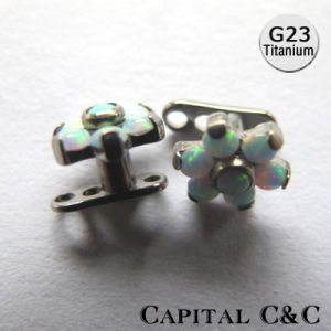 G23 Titanium Prong Setting Multi Gem Flower Dermal Anchor Top