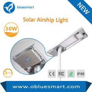 Outdoor Solar LED Street Garden Light with Solar Panel pictures & photos